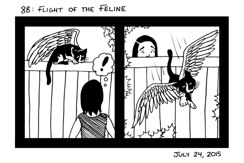 Flight of the Feline