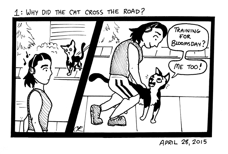 Why Did The Cat Cross The Road?