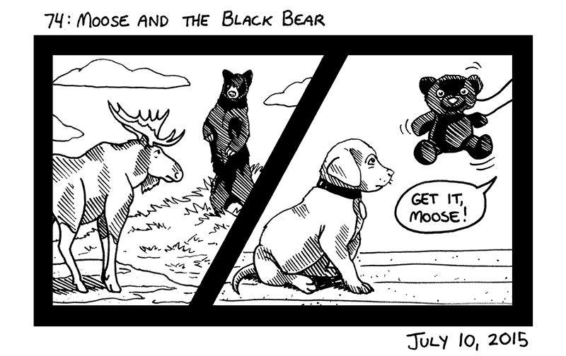Moose and the Black Bear