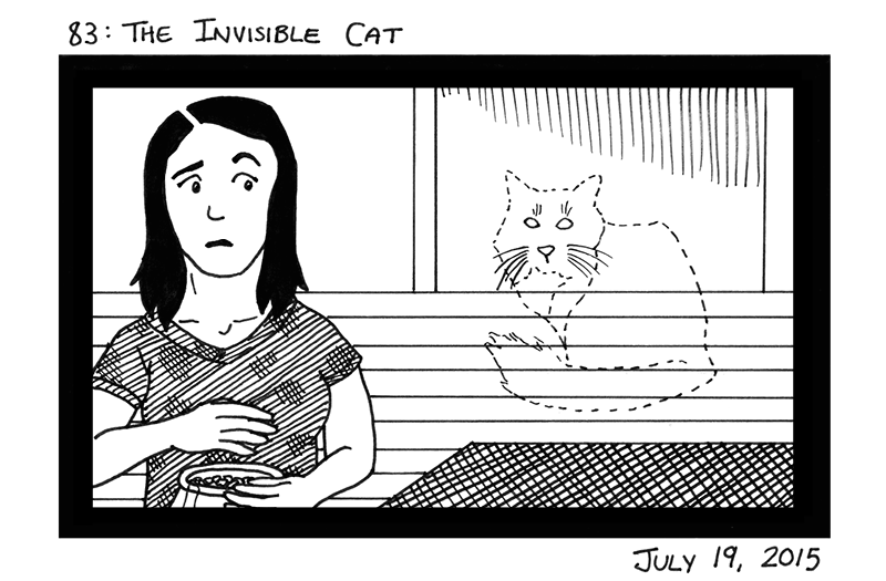 The Invisible Cat