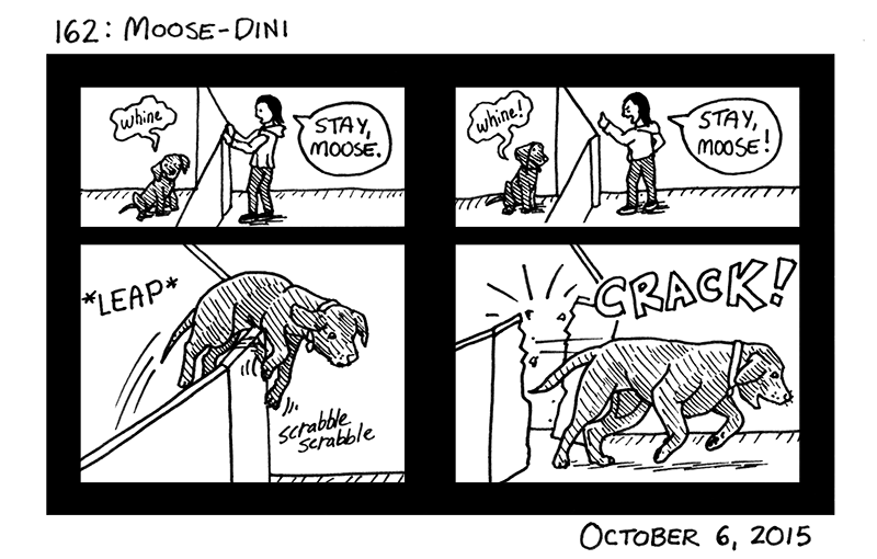Moose-dini