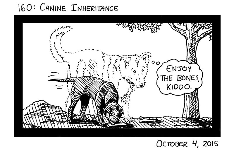 Canine Inheritance